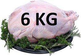 06 kg Verse hele kalkoen