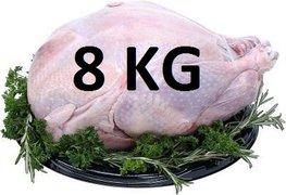 08 kg Verse hele kalkoen