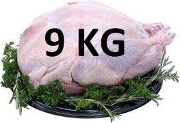 09 kg Verse hele kalkoen