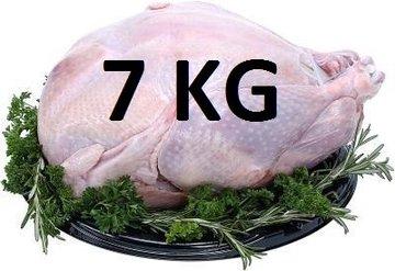 07 kg Verse hele kalkoen